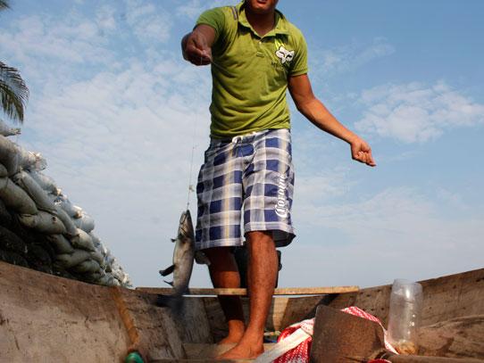 Los bagres son pesca usual en el Canal de Chiquimulilla. Foto: Jorge Rodríguez/Viatori
