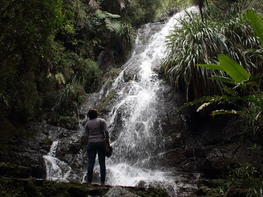 Hay varias caídas de agua dentro del Biotopo del Quetzal. Foto: Jorge Rodríguez/Viatori