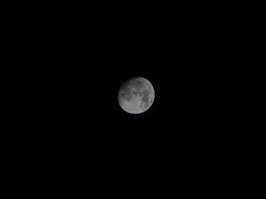 La luz de la luna nos acompañó durante nuestra caminata nocturna. Foto: Jorge Rodríguez/Viatori